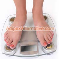 Adipex Weight Loss